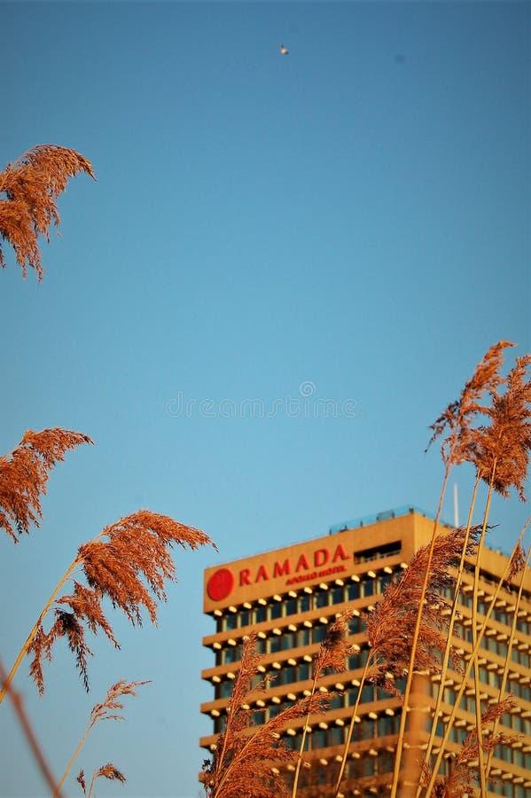 Parco aan del het dell'hotel a Amsterdam immagini stock libere da diritti