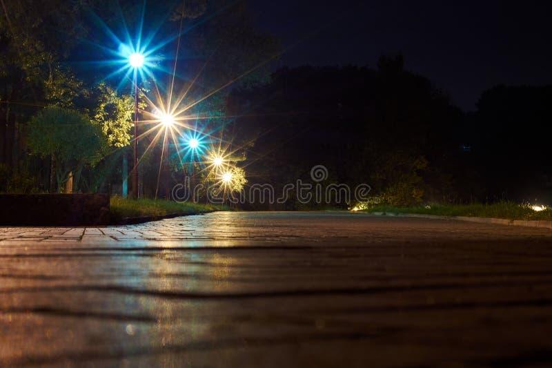 Parco alla notte con le lampade fotografie stock libere da diritti
