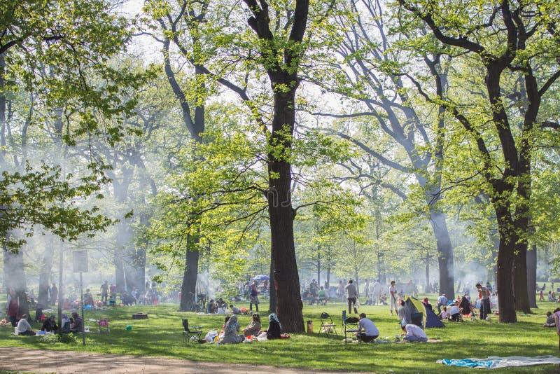 Parco ammucchiato con la gente che fa barbecue immagini stock libere da diritti