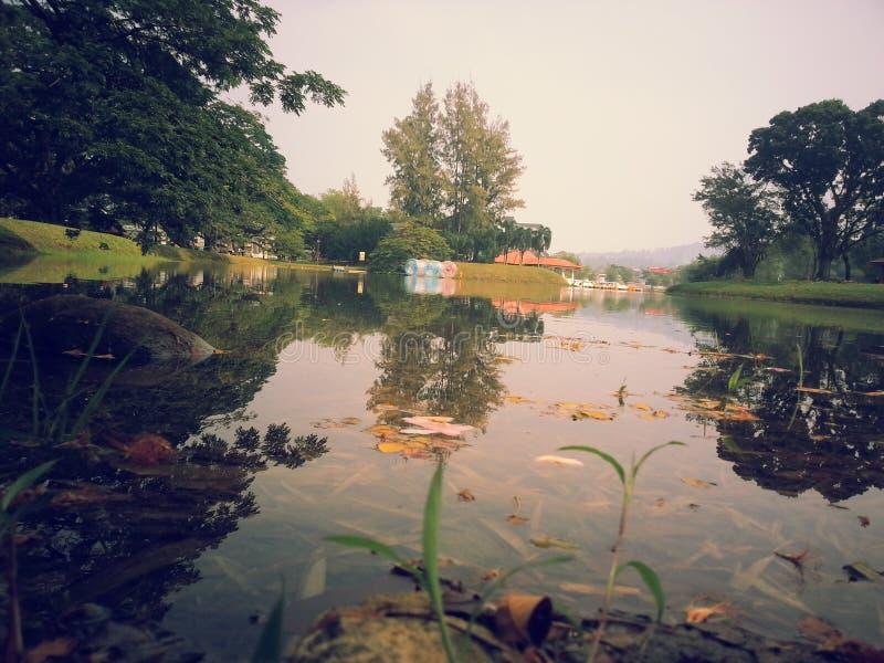 Parco caldo di giorno fotografie stock libere da diritti