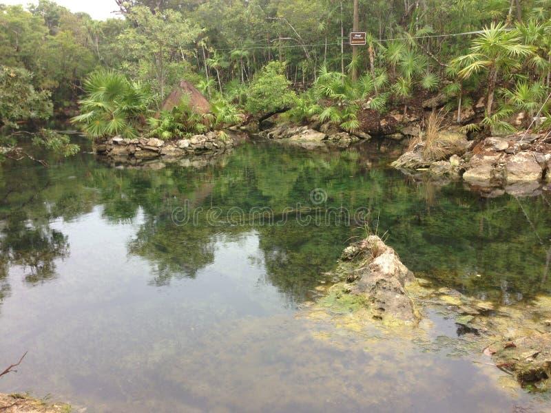 Parco, cenote e pietre dell'acqua Xel-ha fotografia stock