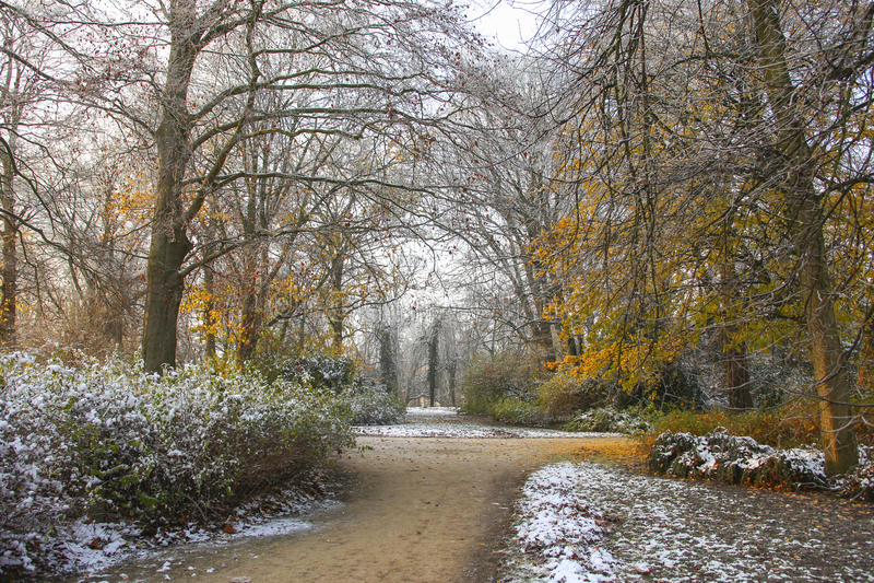Parco con gli alberi variopinti in autunno immagini stock libere da diritti