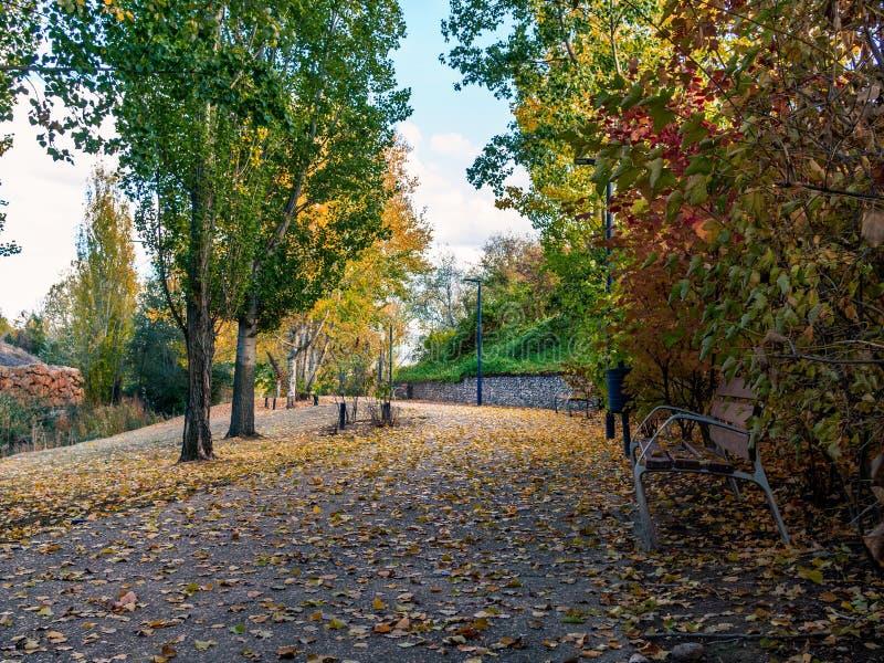 Parco con il banco fotografia stock libera da diritti