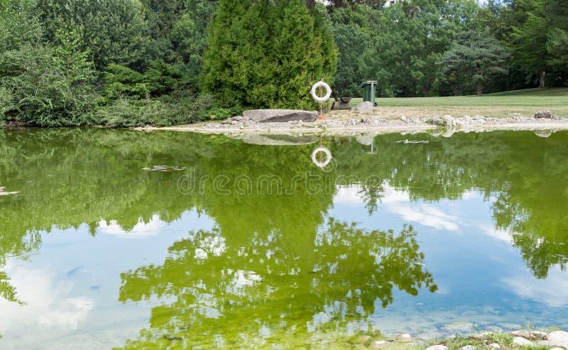 Parco con il lago 1 immagini stock