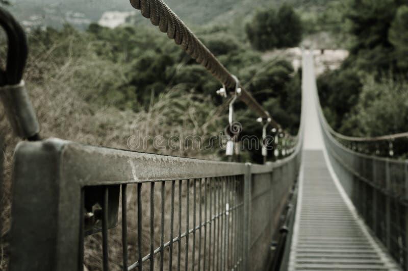 Parco con il ponte provvisto di cardini. Israele fotografie stock