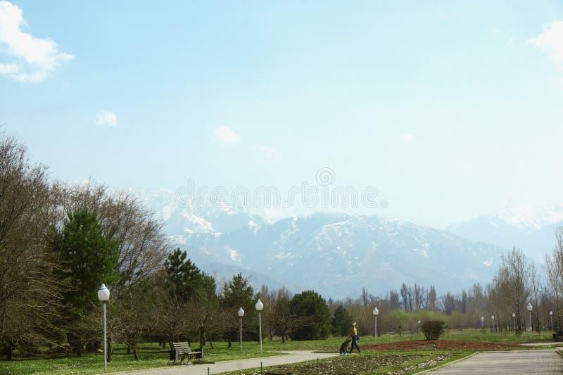 Parco con l'alto Mountain View innevato immagini stock libere da diritti