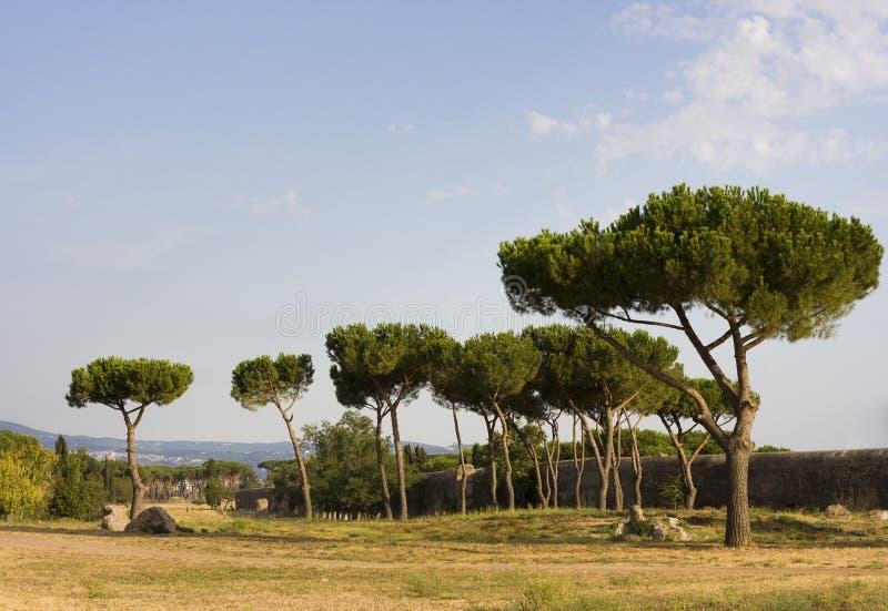 Download Parco Degli Acquedotti - Rome, Italy Stock Image - Image: 26806845