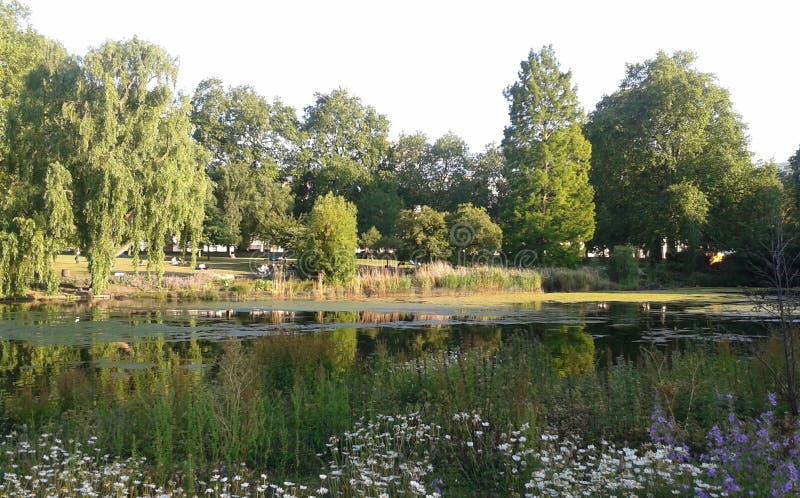 Parco del ` s di St James, estate - Londra parcheggia fotografia stock libera da diritti