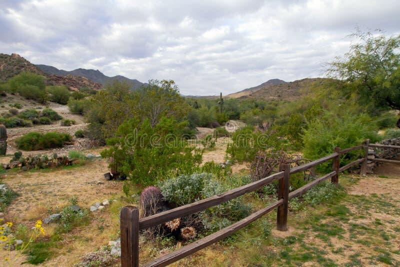 Parco del sud della montagna, Phoenix, Arizona immagini stock