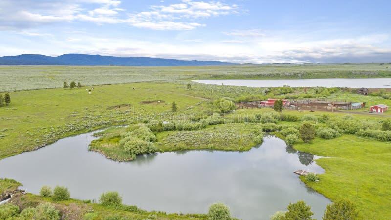 Parco dell'isola, IDAHO vicino al parco nazionale di Yellowstone fotografie stock libere da diritti