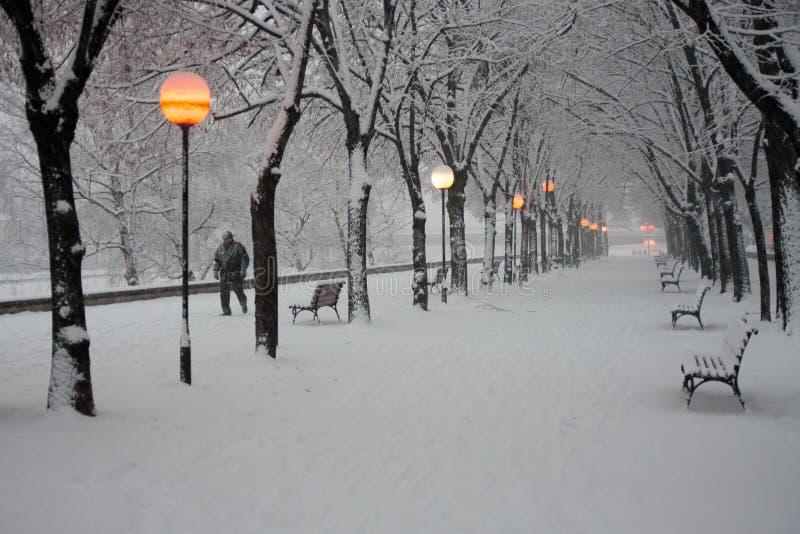 Parco della città di Skopje nella neve fotografia stock