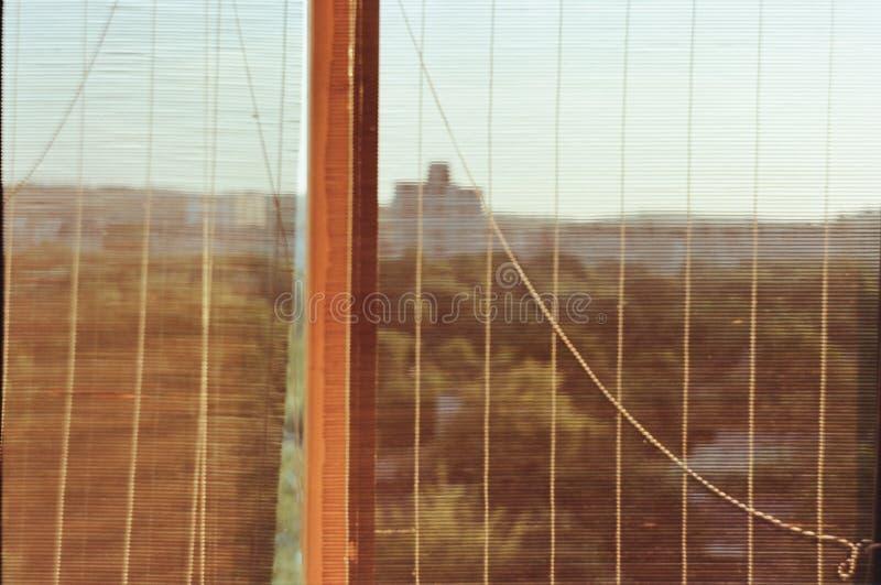 Parco della città nella finestra immagine stock