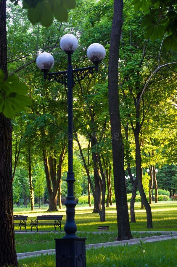 Parco della città della primavera fotografia stock