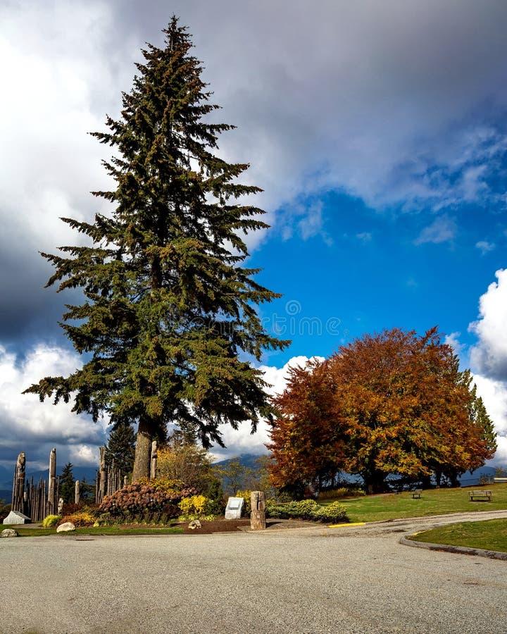Parco della montagna di Burnaby fotografia stock libera da diritti