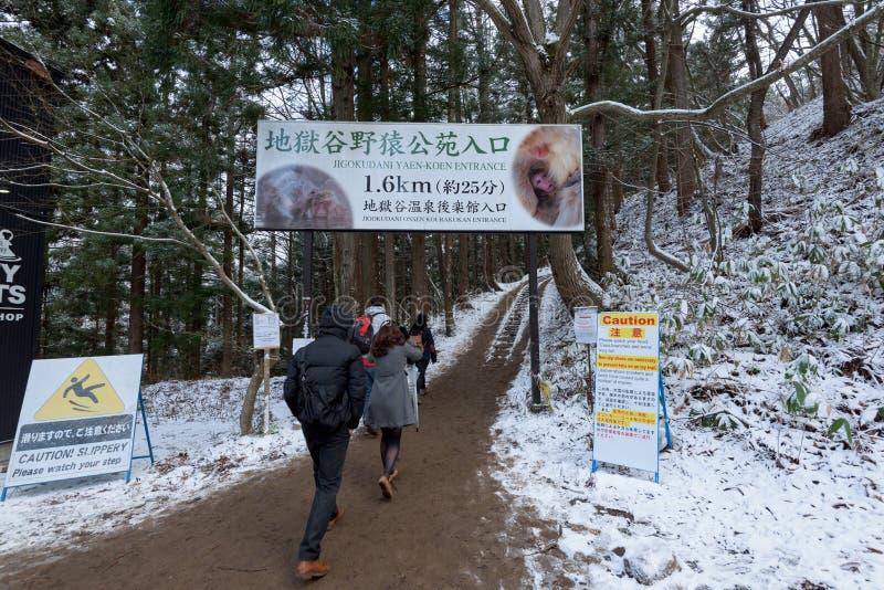 Parco della scimmia della neve, Yamanouchi, Giappone immagini stock libere da diritti