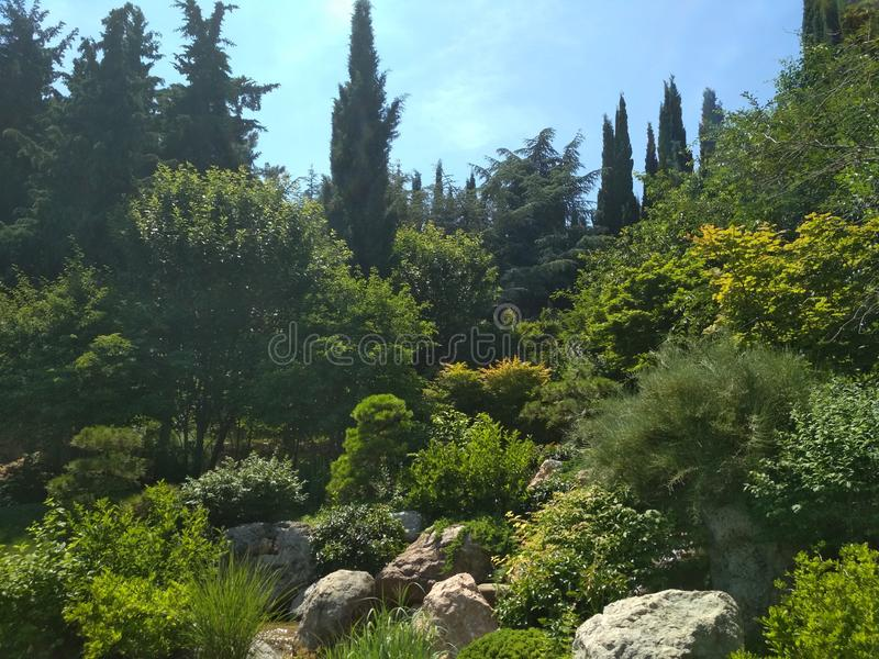 Parco di Aivazovsky in Crimea immagini stock libere da diritti