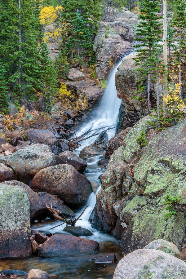 Parco di Alberta Falls Rocky Mountain National fotografia stock