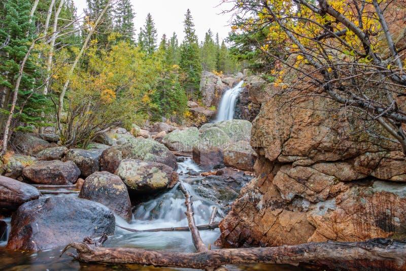 Parco di Alberta Falls Rocky Mountain National fotografia stock