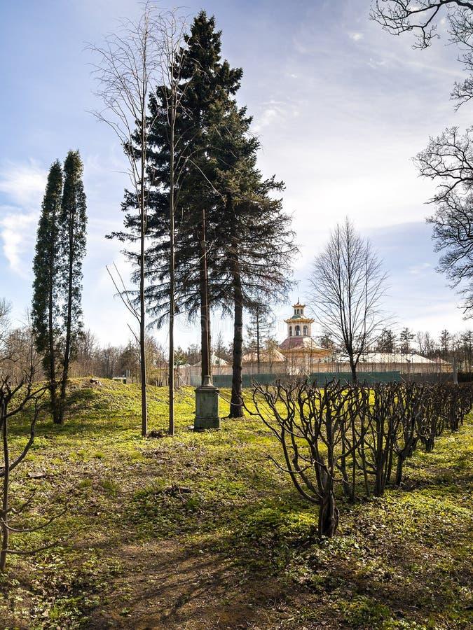 Parco di Alexandrovsky in primavera a maggio in Tsarskoye Selo Giorno Ca della st Patricks immagine stock libera da diritti