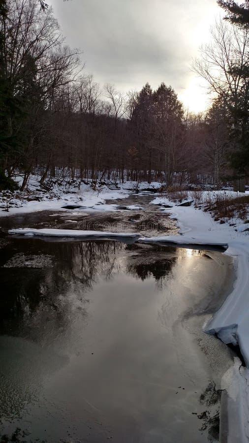 Parco di Allegany fotografia stock libera da diritti