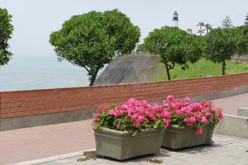 Parco di Antonio Raymondi nel distretto di Miraflores di Lima fotografia stock