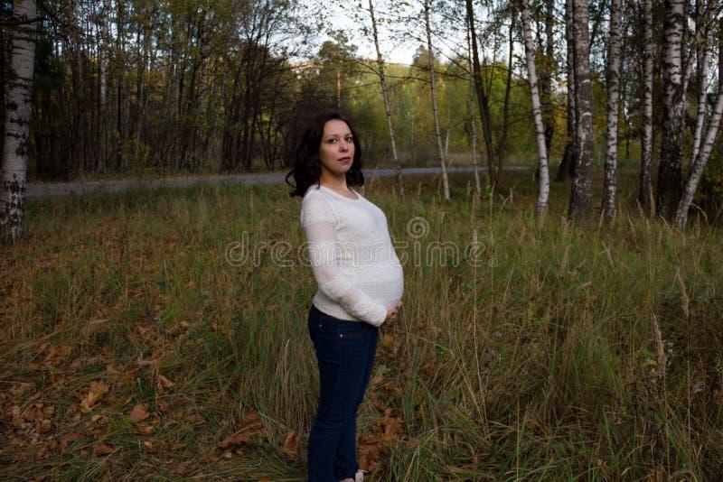 Parco di autunno della donna incinta di Pleasured fotografia stock libera da diritti