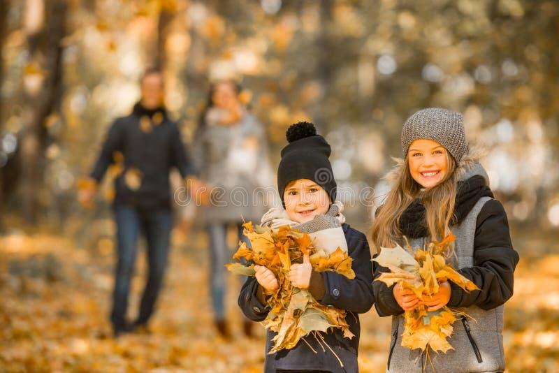 Parco di autunno della passeggiata immagini stock