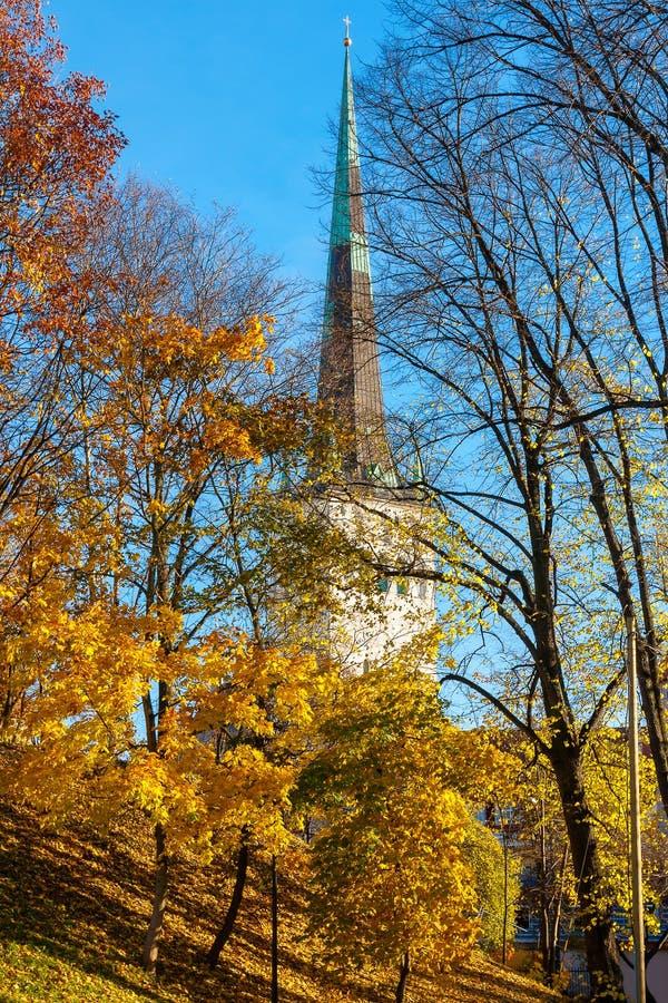 Parco di autunno tallinn L'Estonia fotografia stock