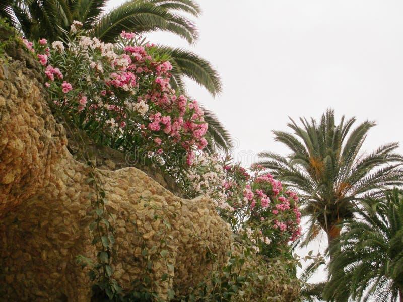 Parco di Barcellona Guell fotografia stock