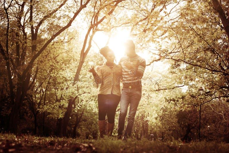Parco di camminata della depressione delle coppie felici afroamericane fotografia stock