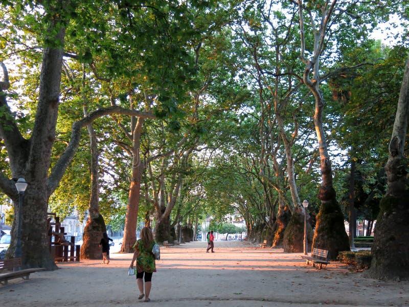 Parco di Cordoaria a Oporto immagini stock libere da diritti