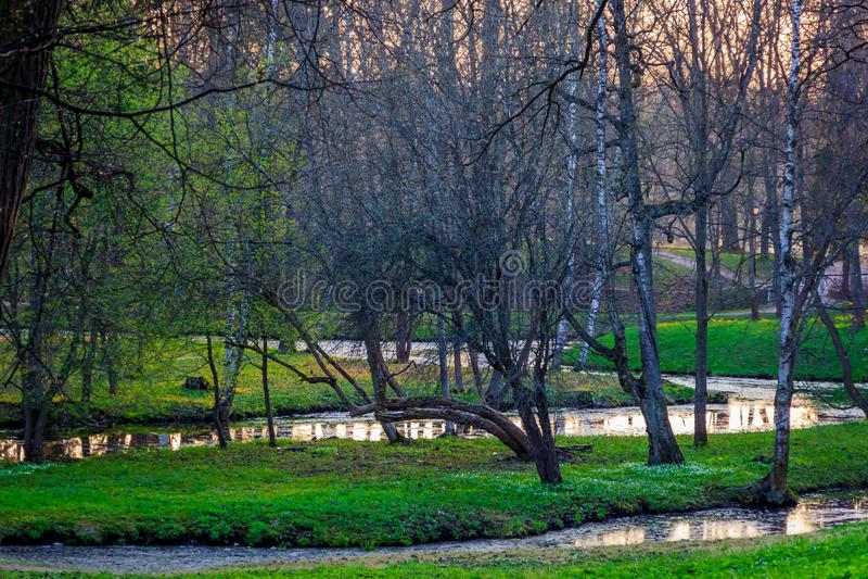 Parco di Gatcina della primavera immagini stock