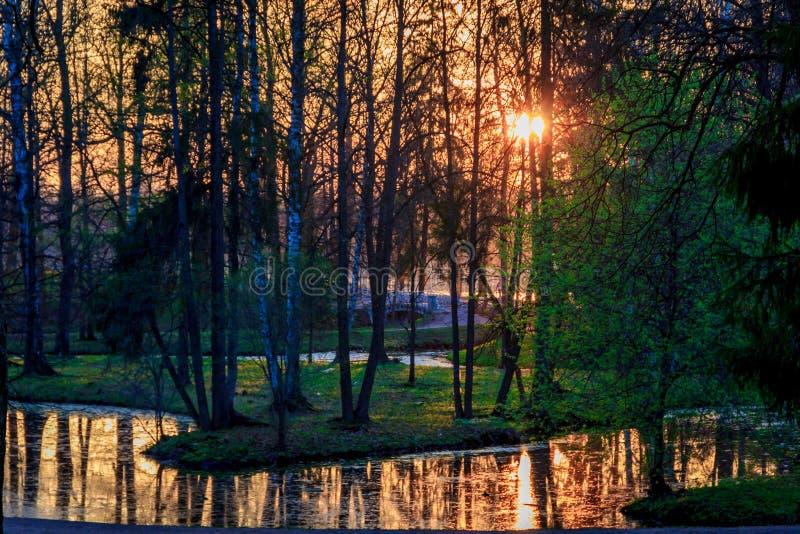 Parco di Gatcina della primavera immagini stock libere da diritti