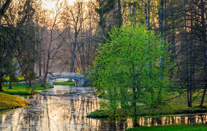 Parco di Gatcina della primavera immagine stock