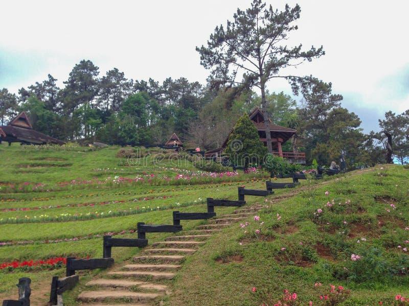 Parco di Huai Nam Dang National del punto di vista, Chiang Mai, Tailandia fotografia stock