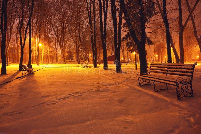 Parco di inverno con i banchi coperti di neve nella sera immagine stock libera da diritti
