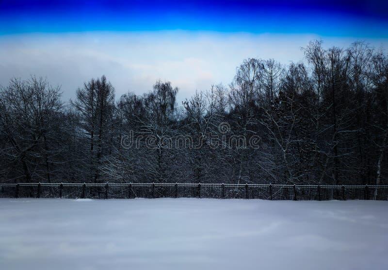 Parco di inverno con il fondo del paesaggio del confine del recinto immagine stock libera da diritti
