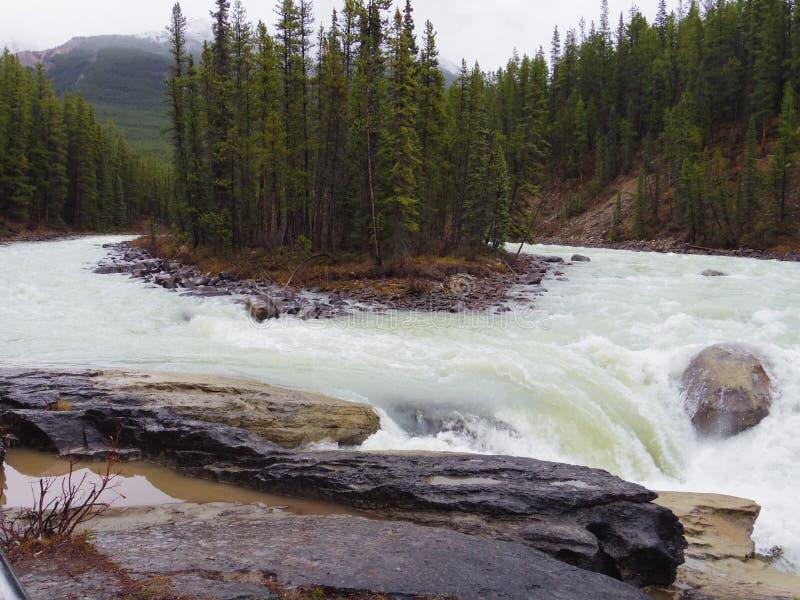 Parco di Jasper National, Cananda immagine stock