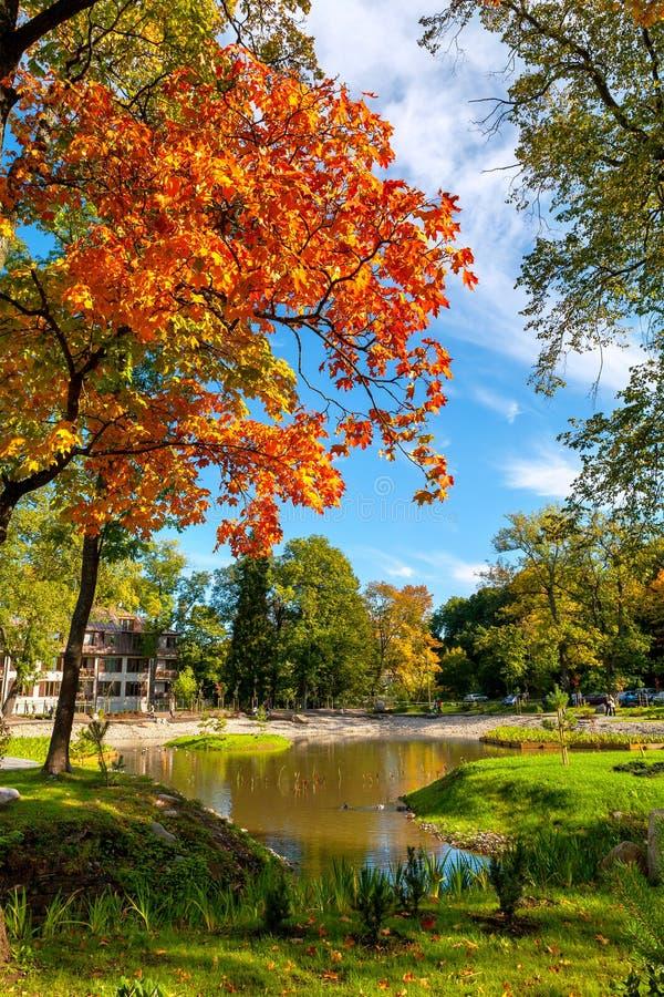 Parco di Kadriorg. Tallinn, Estonia immagine stock libera da diritti
