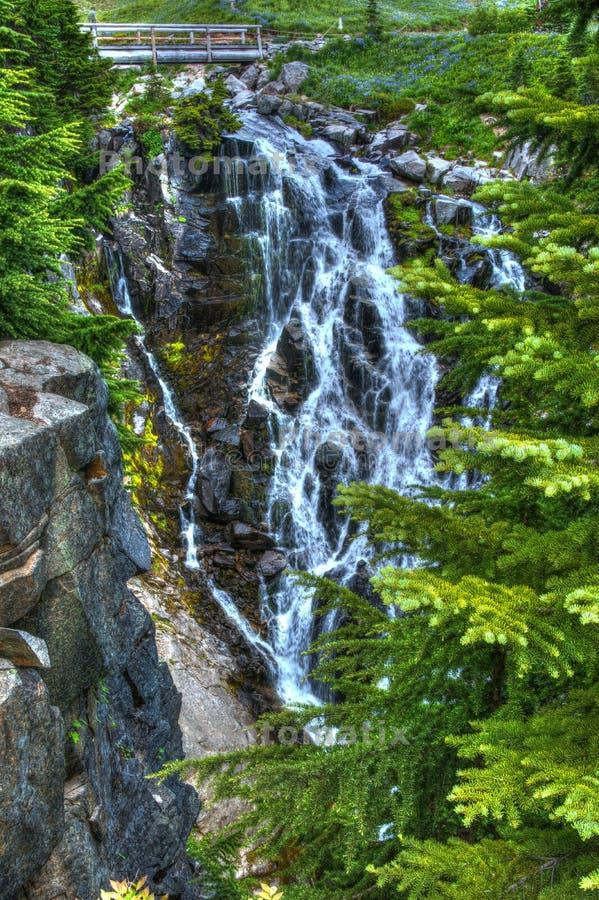 Parco di Myrtle Falls Mount Rainier National fotografia stock libera da diritti