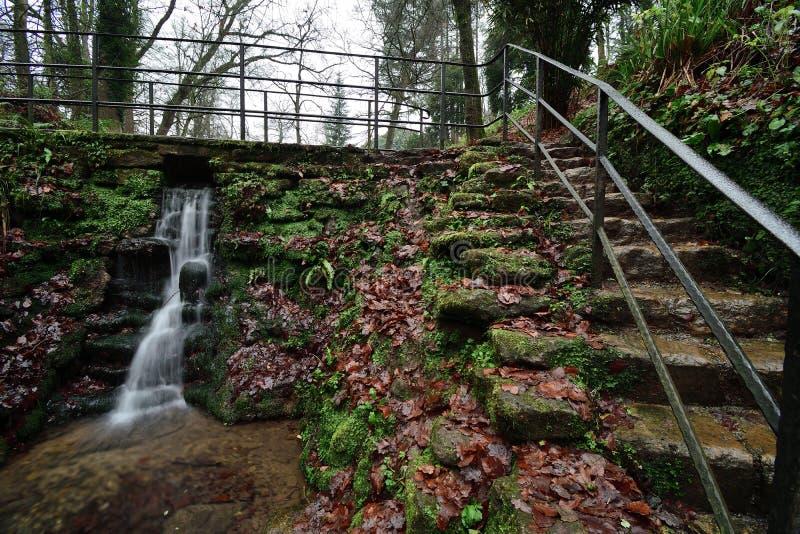Parco di Ninesprings in Yeovil immagine stock libera da diritti