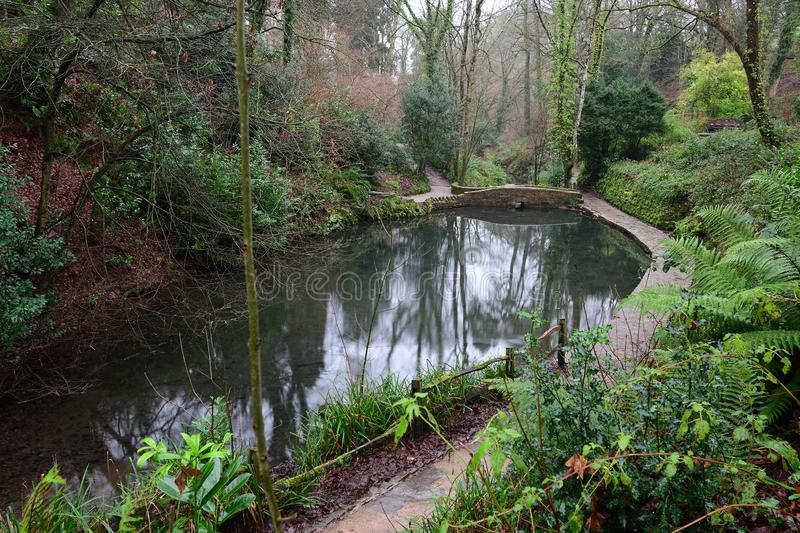 Parco di Ninesprings in Yeovil immagine stock