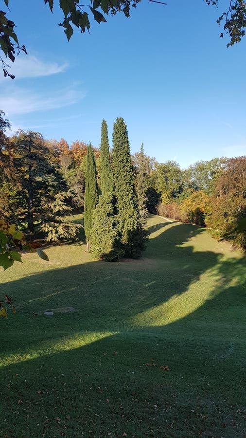 Parco di Rotschild immagini stock libere da diritti