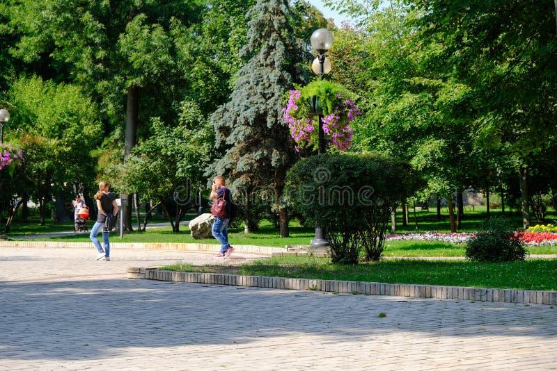 Parco di Shevchenko, paesaggio di estate fotografia stock libera da diritti
