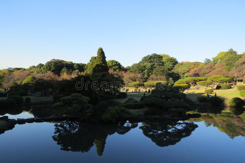 Parco di Shinjuku Gyoen di visita fotografie stock