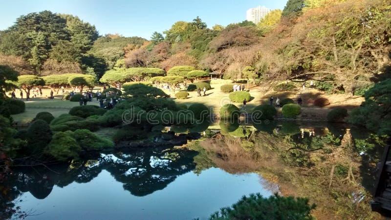 Parco di Shinjuku Gyoen di visita fotografie stock libere da diritti