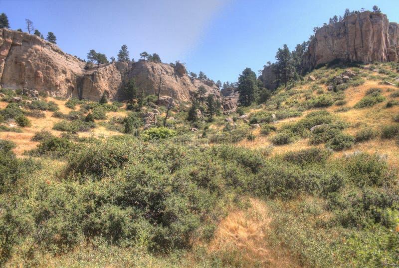 Parco di stato dell'immagine grafica fuori delle fatturazioni, Montana di estate immagine stock