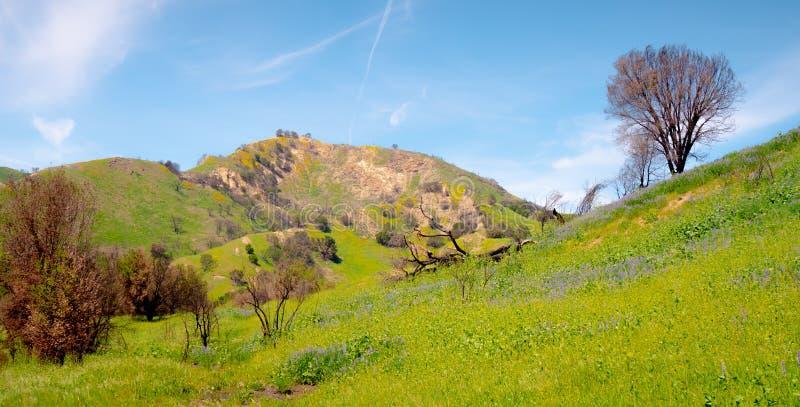Parco di stato dell'insenatura di Malibu in California fotografia stock