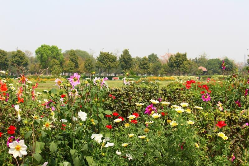 Parco di Swarn Jayanti, Rohini, Nuova Delhi, India fotografia stock