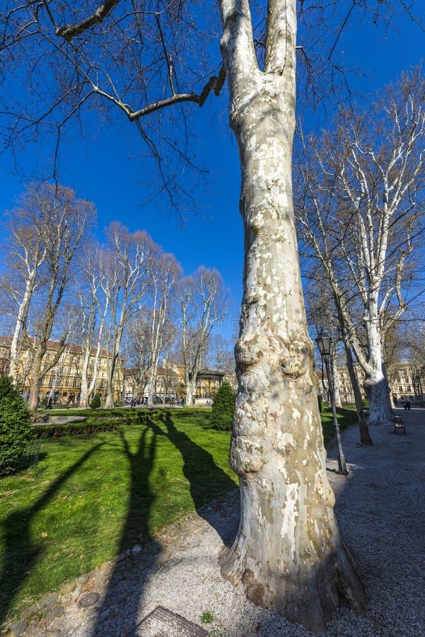 Parco di Zrinjevac, Zagabria fotografia stock